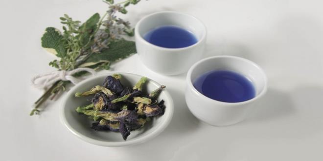blue-pea-tea2-1024x682-Copy